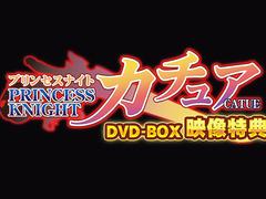 Princess Knight Catue Special