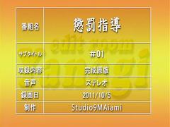 Oshioki: Gakuen Reijou Kousei Keikaku