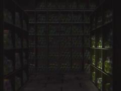 Toki Neiro ep1 ENG VOICE