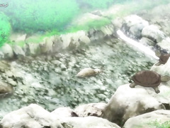 Futari Ecchi OVA-2 ep1 ARA SUB